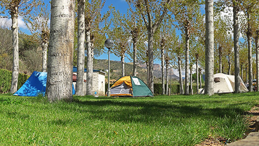 Tent pitch offer